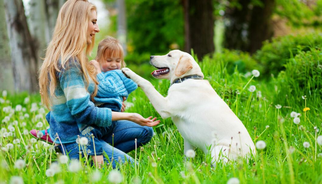 Å være sammen med dyr gir god helse