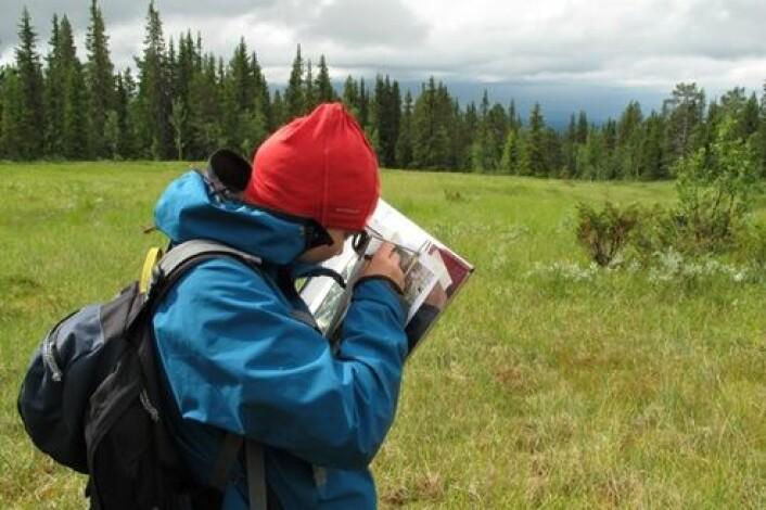 Heidrun er stipendiat på kartlegging av naturtyper og skal lære elevene om bærekraftig utvikling fra høsten. Foto: Anders Bryn