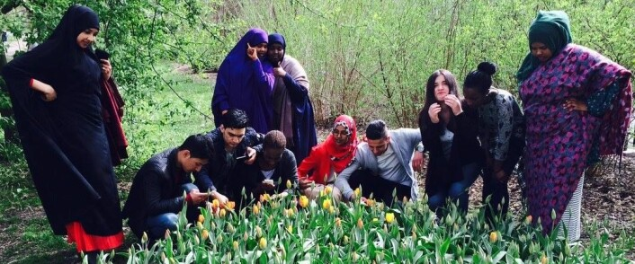 Hersleb   Naturhistorisk museum = sant. Våren har kommet i Botanisk hage! Foto: Hersleb vgs.