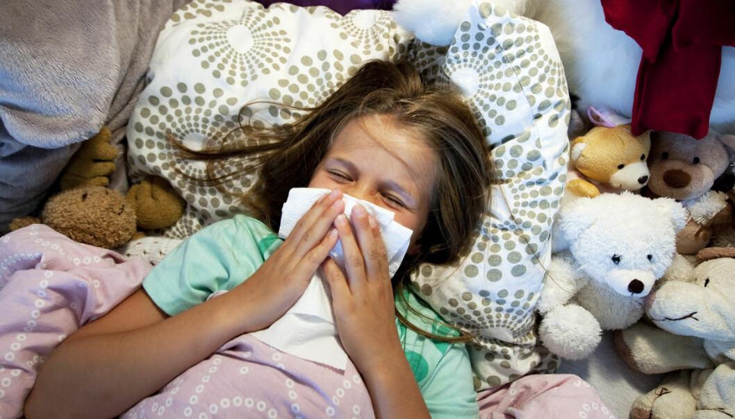 Om vinteren går immunsystemet – kroppens forsvarssystem – på høygir. En ny stor undersøkelse forklarer nå at forklaringen ligger i genene. De skrur på immunsystemet. Kunnskapen betyr trolig at det er best å vaksinere seg om vinteren, da immunsystemet reagerer sterkest. På den andre siden vil et aktivt immunsystem gi betennelser som kan føre til sykdommer, for eksempel diabetes, hjertesykdom eller betennelsessykdommer som multippel sklerose. (Foto: NTB scanpix)