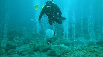 Surere hav gjør sjøsnegler mindre