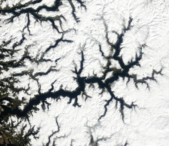 Sommeren er ikke her riktig enda, som vi ser i dette satellittbildet fra Sognefjorden 28 april. (Bilde: NASA Terra MODIS)