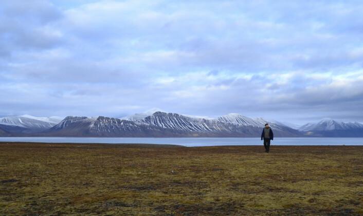Jan Dyre Bjerknes i stillheten over sletta ved Ingebrigtsenbukta. (Foto: Trond Kasper Mikkelsen)