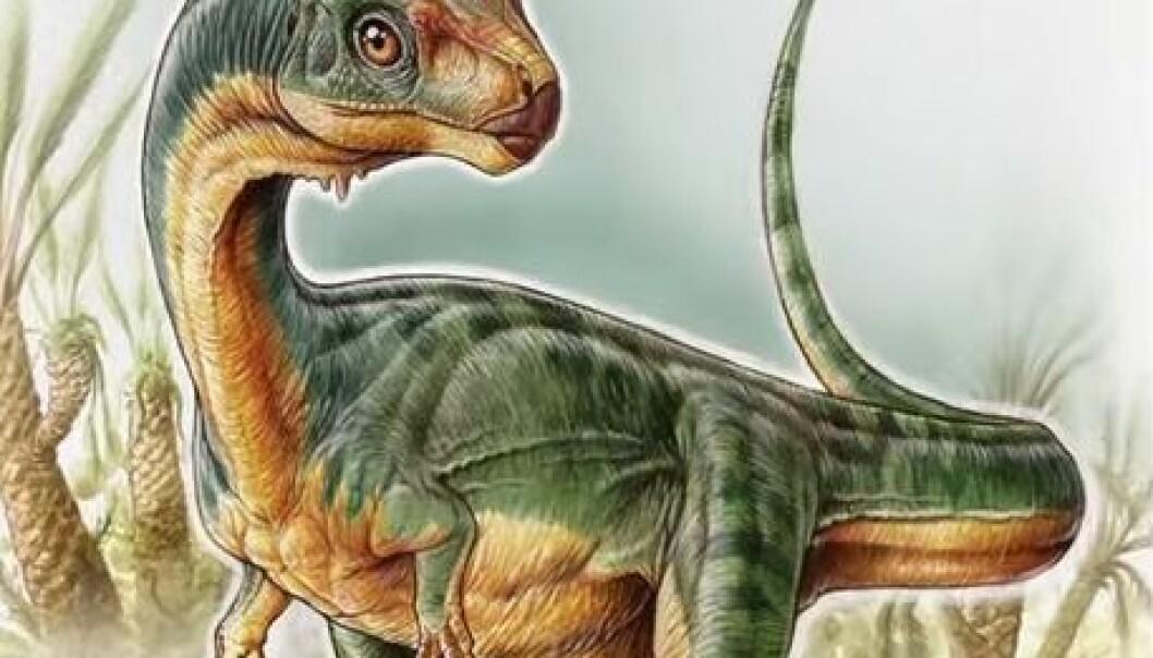 Professor Jørn Hurum tror det stemmer at de har funnet en ny dino. Men han er helt enig i at det er et helt merkelig dyr. (Illustrasjon: Gabriel Lío, stillbilde fra forskernes youtubevideo)