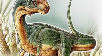 Sjuåring fant bisarr dinosaur