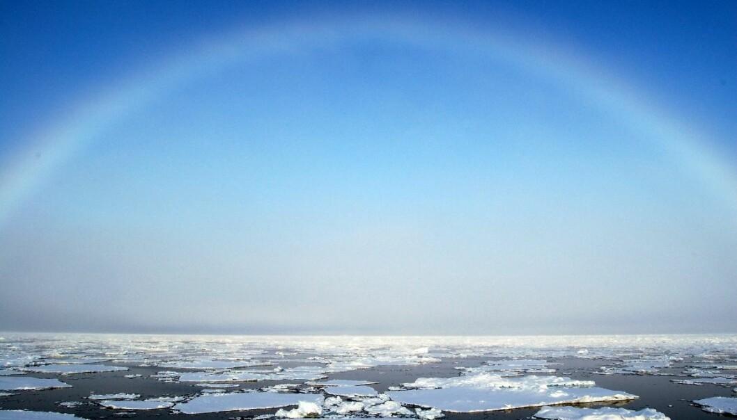 Det er først mot midten av dette århundret at vi kan forvente store økninger av temperaturen i Barentshavet. Det er uheldig at den nylig fremlagte stortingsmeldingen om iskanten ikke tar opp i seg dette, skriver kronikkforfatteren. (Foto: Jon. S. Rønning, Havforskningsinstituttet)