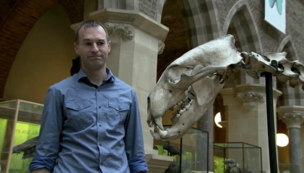 Evolusjonsbiolog Greger Larson samler forskere fra hele verden til å analysere skjelett, hodeskaller og tenner fra hunder og ulver som levde for flere tiår siden. (Stillbilde fra eksperimentets youtubevideo, Science Magazine)