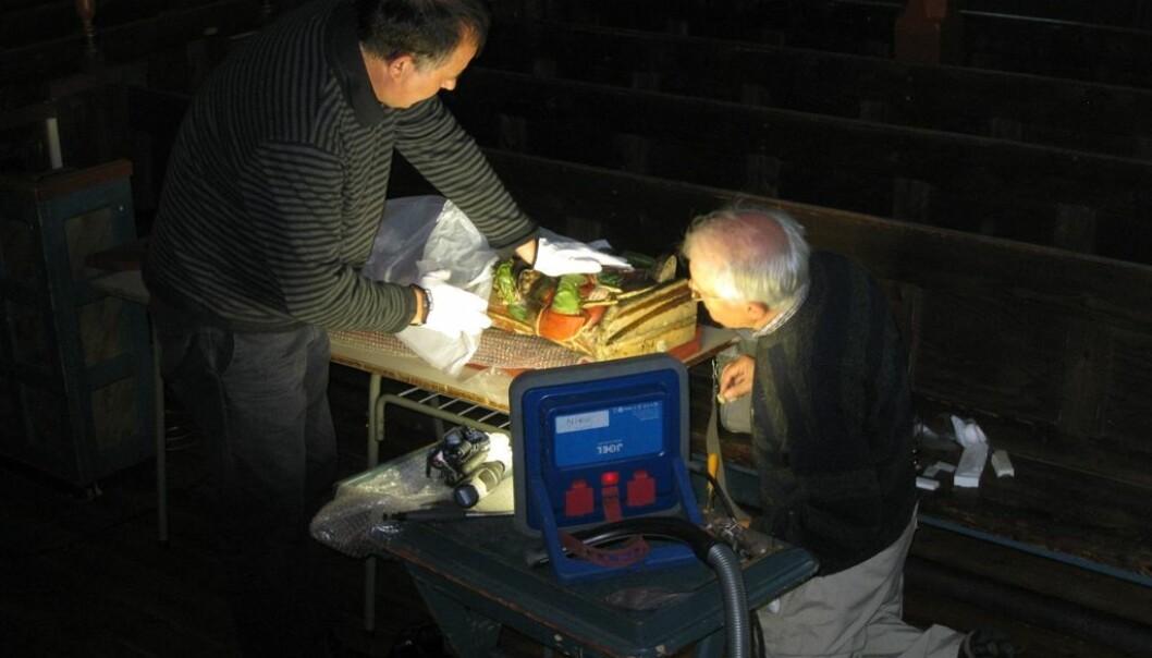 Feltarbeid i Hadsel kirke. Jan Michael Stornes og Thomas Bartholin vurderer de bearbeidede årringbanene på undersiden av  St. Katarin-skulpturen før skanning og fotodokumentasjon av årringene. (Foto: Tone Marie Olstad, NIKU)
