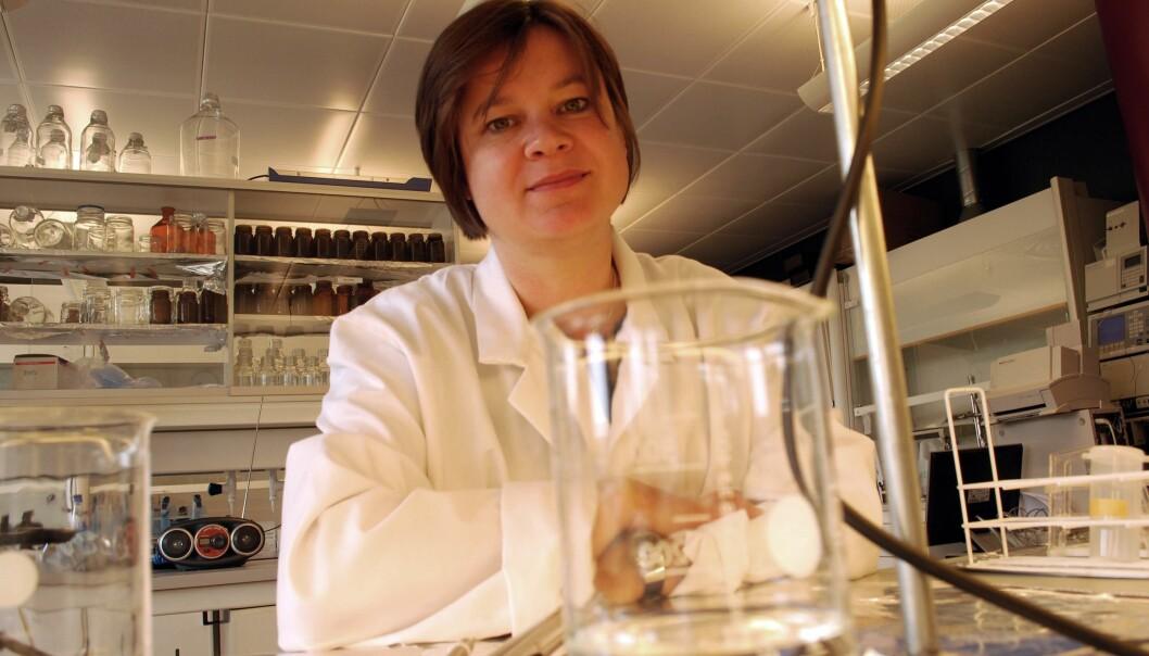 Kjemiforsker Dorte Herzke kommer fra Berlin og er nødt for å ha en skikkelig kopp kaffe på kaffebar før hun entrer laben. (Foto: Helge Markusson)