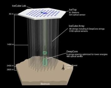 IceCube-detektoren dekker en kubikkilometer is på Sydpolen. Instrumentene består av 86 kabler, hver med 60 digitale optiske moduler (ekstremt følsomme lys-sensorer).  (Foto: (Illustrasjon: IceCube Collaboration) )