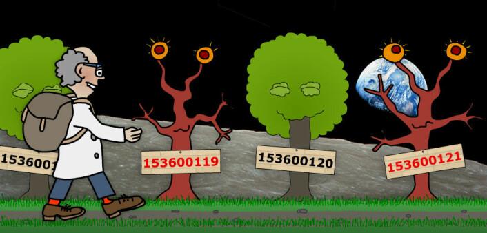Ute ved månen begynte matematikeren å få gnagsår, tross den lave tyngdekraften. Her støtte han på et tvillingprimtall. Det er to primtall som bare har ett annet tall mellom seg. (Illustrasjon: Arnfinn Christensen. Foto: Nasa)