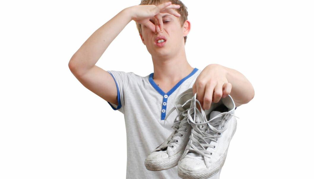 – Det er så vidt jeg klarer å gå inn på kjellerstuen når de er en gjeng der, forteller en fjortisfar som vil vite hvorfor tenåringsgutter lukter vondt. (Illustrasjonsfoto: Microstock)