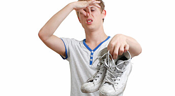 Spør en forsker: Hvorfor stinker fjortisgutter?