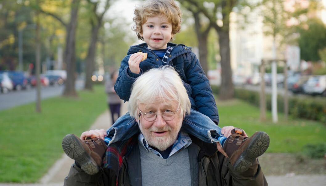 Når du blir bestefar, kan du plutselig føle deg mye eldre, og kanskje mindre maskulin. Dermed kan det hende at du også begynner å oppføre deg eldre og lever mer usunt. Dette kan være en forklaring på at norske bestefedre løper en helserisiko. (Foto: Jan Haas, NTB scanpix)
