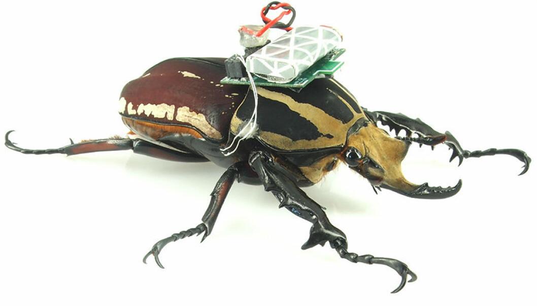 Et hopp fram for fjernstyrte biller