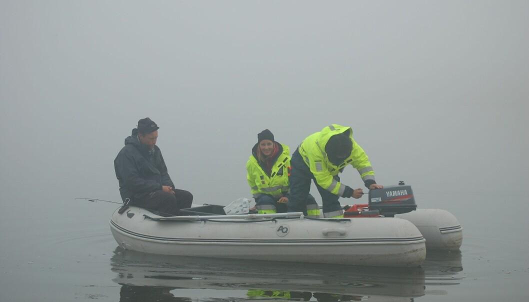 En gummibåt med forskere fra Akvaplan-niva glir stille ut på tåkelagt vann. Stedet er Ellasjøen på Bjørnøya. Fra venstre: Guttorm Christensen, Jenny Bytingsvik og Anita Evenset. (Foto: Marianne Frantzen)