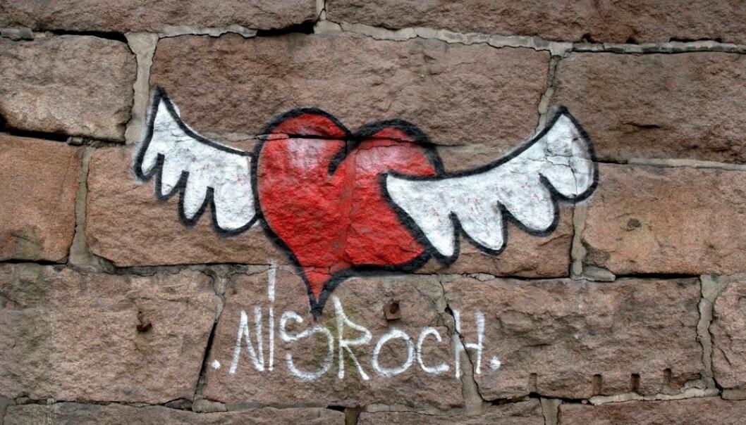 Hvordan fungerer kjærlighet på avstand? Det er tema for en ny, svensk doktorgrad. Det aller viktigste er å skape seg et bilde av en framtid sammen. Det er svært viktig å ha samme tanker og mål, mener den nye doktoren i kjærlighet.  (Foto: Mimsy Møller, NTB scanpix)