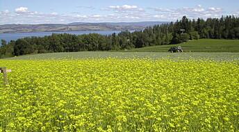 Grønn, norsk olje i stedet for importert soya