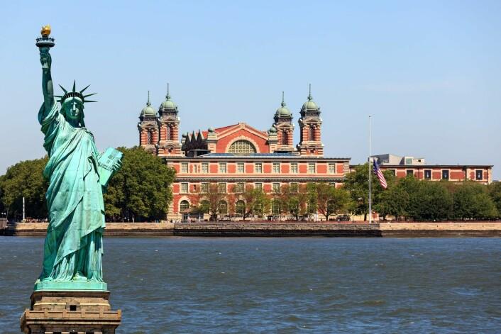 Slik møtte dine forfedre, utvandrerne, New York. Frihetsgudinnen ønsket dem velkommen. (Foto: Microstock)