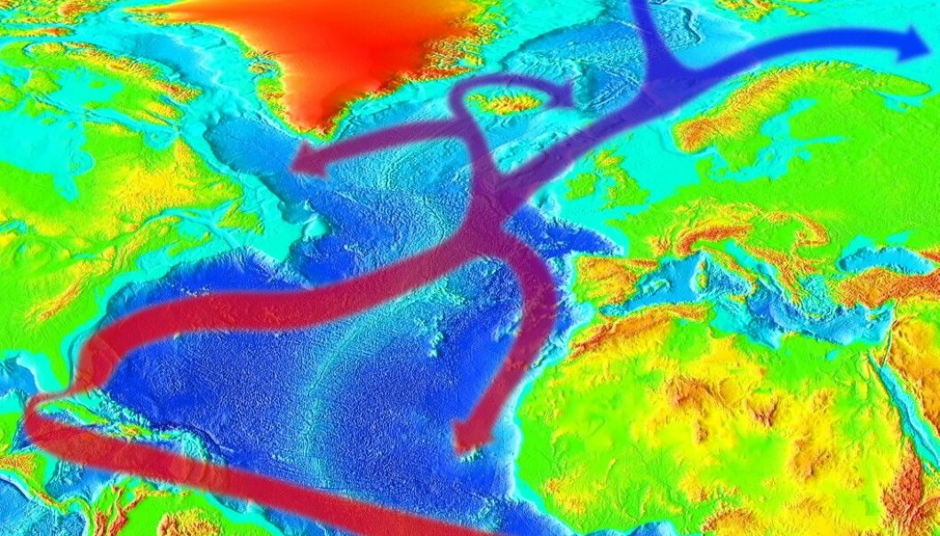 Strømmen som bærer varme opp til oss kommer fra Mexicogulfen, og splitter seg i flere strømmer. Hos oss kalles den for Den norske Atlanterhavsstrømmen. (Bilde: RedAndr)