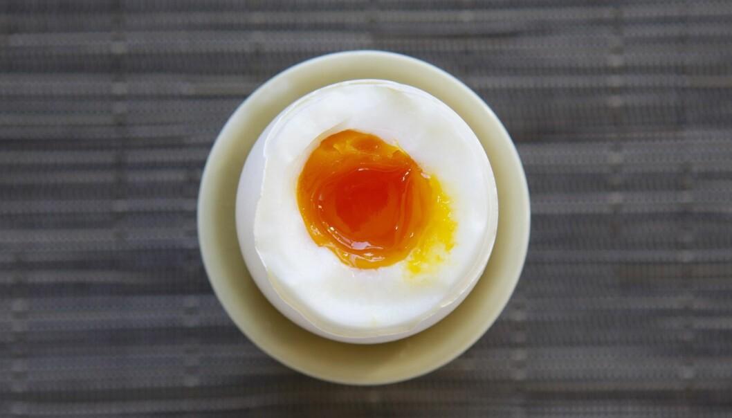 Egget er en kylling som ikke er puslet sammen ennå – riktig nok uten befruktning, ifølge ernæringsprofessor Birger Svihus.  (Foto: Erlend Aas, NTB Scanpix)