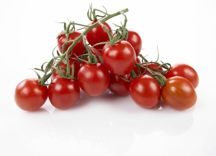 Små plommetomater i klase – én av flere titall nye tomatvarianter som har dukket opp i butikkene siden årtusenskiftet.  (Foto: Frukt.no)