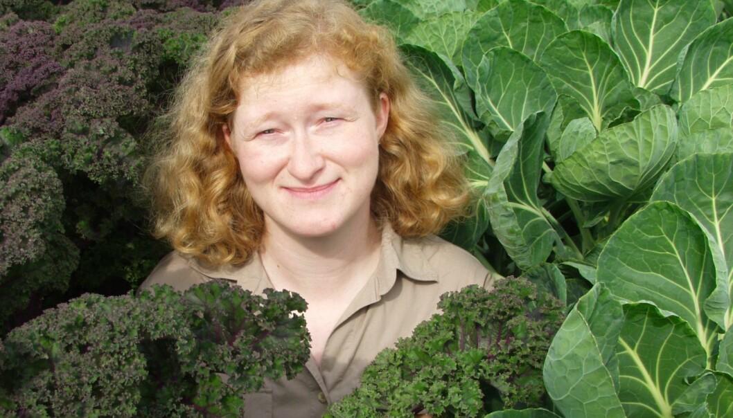 – Spis mer grønnsaker! oppfordrer forsker Anne-Berit Wold fra NMBU. Her med to håndfuller antioksidantrik grønnkål. (Foto: Håkon Sparre)
