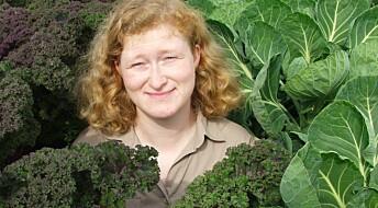 De fem sunneste grønnsakene