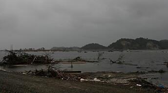 Nytt fra akademia: Japan og Norge samarbeider om bedre tsunamisikring