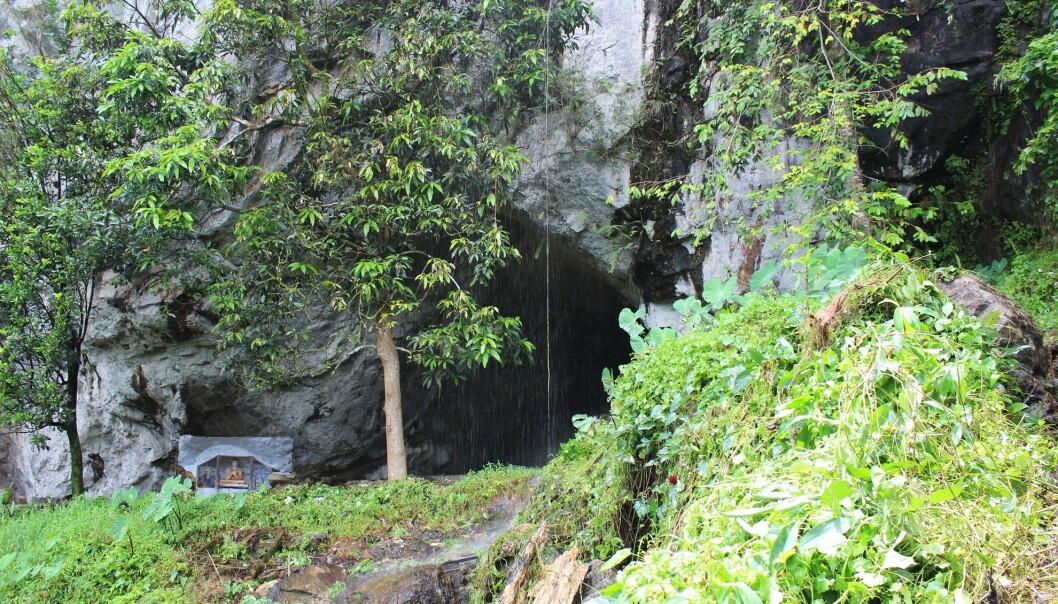 En hule i Batadomba-lena på Sri Lanka, hvor noen av de eldste fossile tennene ble funnet. (Foto: Patrick Roberts)