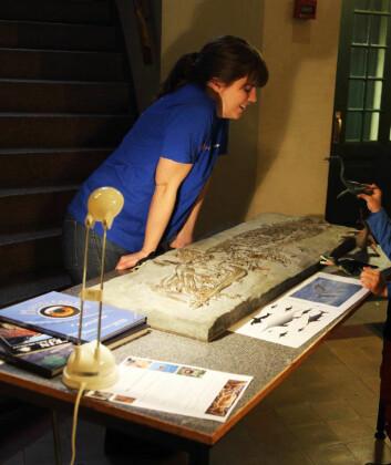Fossildag på museet med mange kunnskapsrike unger. Foto: Bjørn Funke
