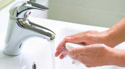 Spør en forsker: Skal jeg bruke håndsåpe eller flytende såpe?