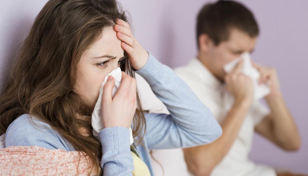 Influensa? Sannsynligvis er du «bare» forkjølet