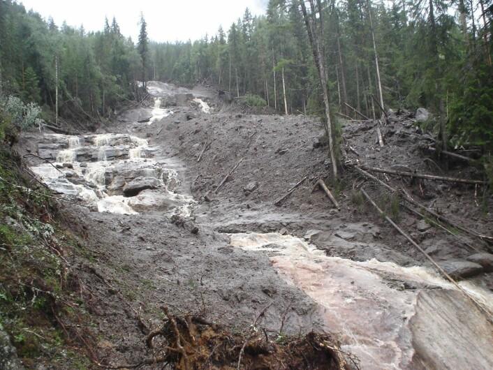 Flomskred i Hallingdal sommeren 2007. Slike hendelser er ofte knyttet til kortvarig,intens nedbør og dårlig drenerte skogsbilveier. (Foto: NGI)