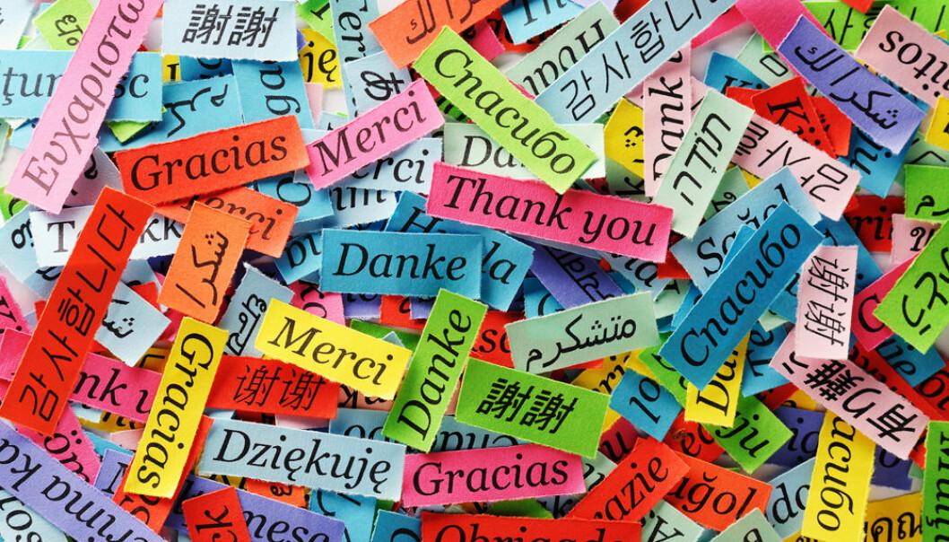På tvers av landegrenser og stridigheter har alle språk ifølge amerikanske forskere én ting felles: De er lykkelige av natur.  (Foto: Microstock)