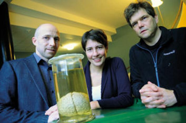 For å skjønne hvordan det svære nettverket med milliarder av nerveceller i hjernen fungerer, må Anders Malthe-Sørenssen (til venstre), Marianne Fyhn og Gaute Einevoll ty til enorme beregninger på universitetets tungregnemaskin.  (Foto: Ola Sæther)