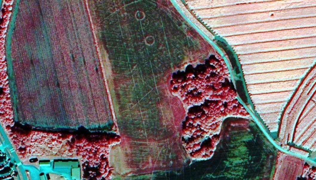 Satellittopptak med to gravhauger i form av sirkler i midten av bildet på et jorde ved Tjøllingvollen syd i Vestfold. (Foto: Digital Globe Norsk Regnesentral)