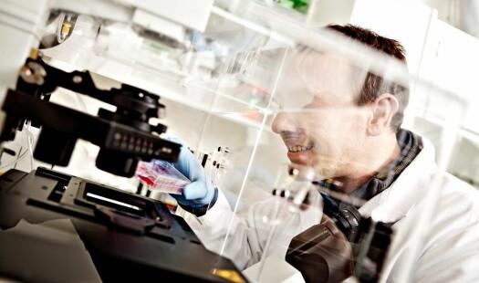 Vi kan ikke forvente at alle forskningsprosjekter lykkes