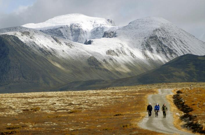 Turgåere på vei mot Spranget i Rondane. (Foto: Anders Gjengedal, Visitnorway)