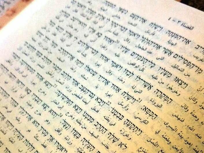 Bibeltekst på hebraisk og arabisk. Slik var det mulig å for Rana Hisham Issa å studere konkrete ordvalg i oversettelser.  (Foto: Marianne Nordahl)