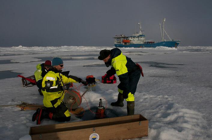 Havforskere i arbeid under tokt nord for Svalbard. (Foto: Norsk Polarinstitutt)