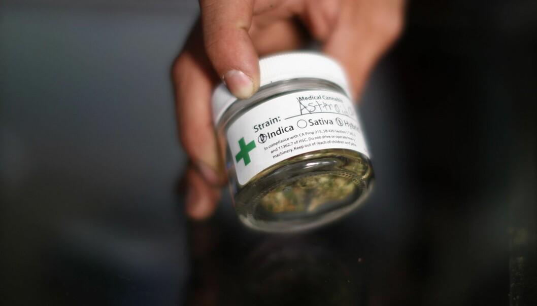 Mindre kriminalitet med lovlig marihuana