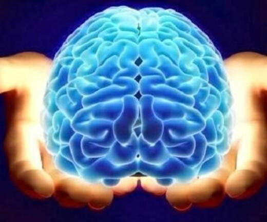 Vår fantastiske, skjøre hjerne