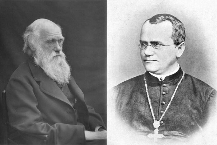Darwin fotografert i 1878 av Leonard fra Woodall. Georg Medel av William Bateson.  (Foto: Wikimedia Commons)