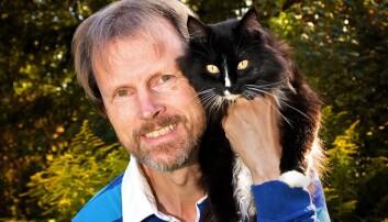 Ti ting du ikke visste om katter