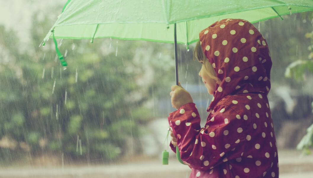 Forskere fra MIT har funnet ut at lukten av sommerregn spres via aerosoler som frigjøres når dråpene treffer bakken.  (Foto: Colourbox)