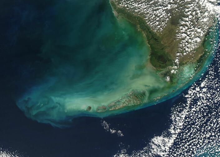 Florida Keys sett fra verdensrommet. (Foto: NASA)