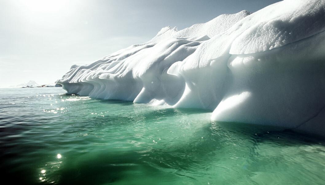 Oppvarmingen av Arktis kan innebære at fisk fra Atlanterhavet og Stillehavet vil blande seg med hverandre. Det kan få konsekvenser for både fiskere og lokale økosystemer.  (Foto: Colourbox)