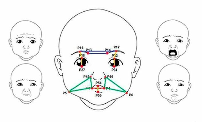 Dataprogrammet bruker posisjonen til 16 punkter (røde prikker) i spebarnets ansikt for å oppdage smerte, ut fra et standardisert vurderingsskjema. (Foto: (Figur: Universitetet i Sao Paulo))