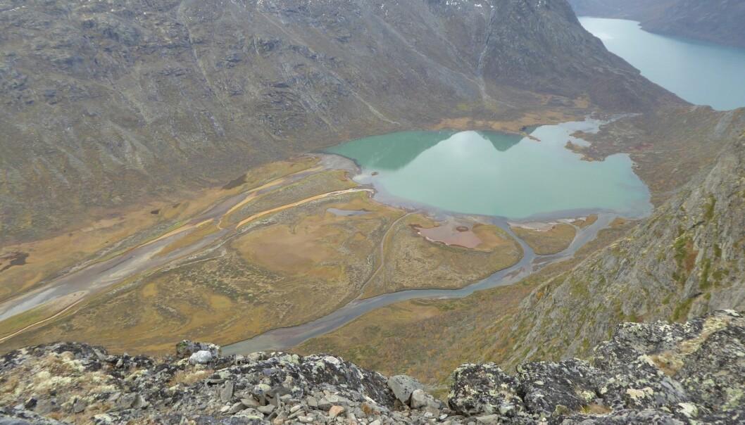 Mykje natur i Norge. Her Leirungsdalen i Jotunheimen. (Foto: Rune Halvorsen, NHM)